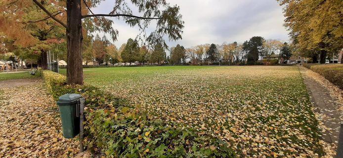 Het voormalige TAR-veld in Losser.