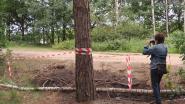 Wandelaars opgelet: broedend buizerdkoppel kan aanvallen (en militairen sluiten pad af)
