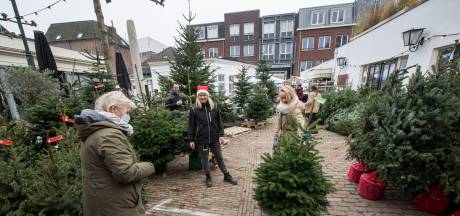 Kerstbomen te koop op terras