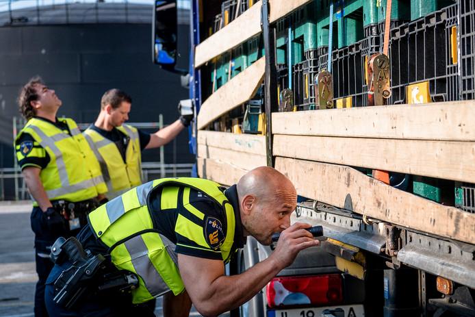De politie treft steeds meer illegale migranten aan in het Rotterdamse havengebied.
