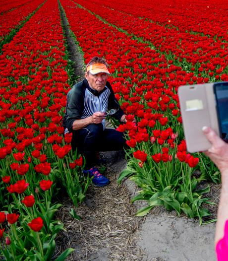 Te veel toeristen? 'Ja, in centrum van Amsterdam, maar daarbuiten volop kansen'