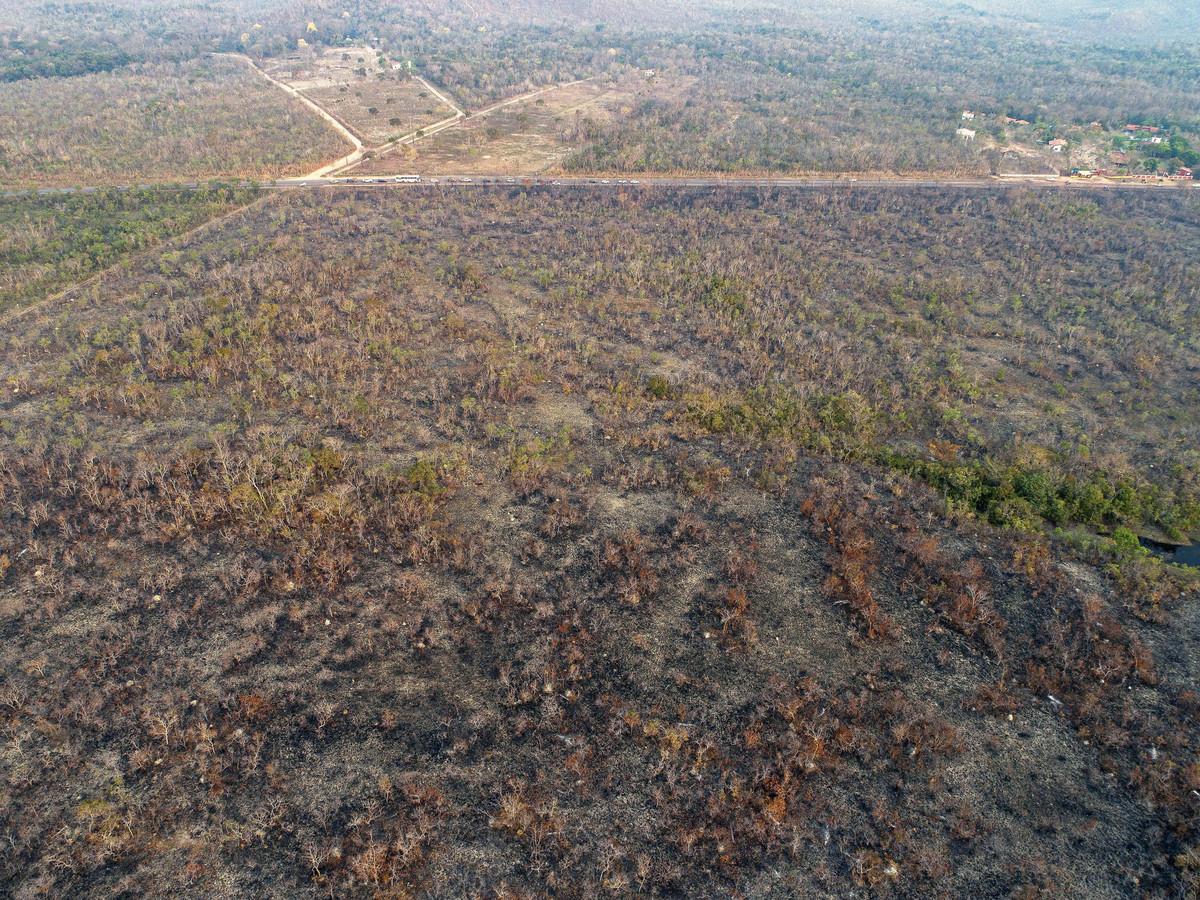 Overzicht van platgebrand Amazone-gebied.