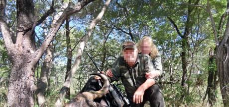 Brabantse arts duikt op als buffeldoder in onderzoek dierenorganisatie