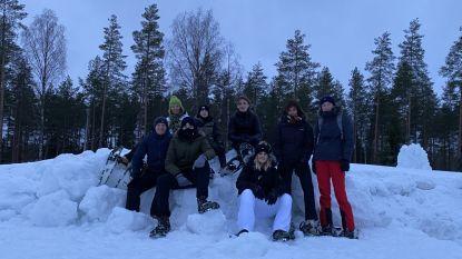 Sint-Vincentius-leerlingen werken in Finland aan Europees erfgoedproject