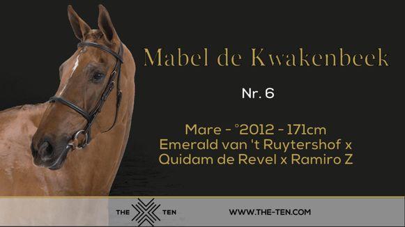 De vijfjarige merrie Mabel de Kwakenbeek werd geveild voor 450.000 euro.