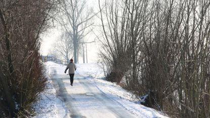 Vrieskou en sneeuw in januari? Weersites wagen zich weer aan onvoorspelbare voorspellingen