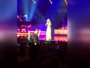 Céline Dion interrompt son concert pour un fan parti aux toilettes