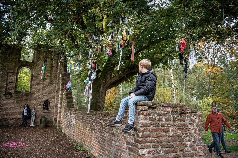 In de bossen van Overasselt staat naast een ruïne van een oude kapel de boom, waar gelovigen vanouds kledingstukken in hingen om genezing af te dwingen.