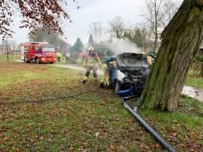 Ernstig ongeval Eefde: auto ramt lantaarnpalen en boom