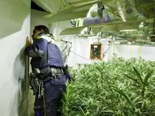 Vier hennepkwekerijen aangetroffen in West-Brabant, drie aanhoudingen verricht