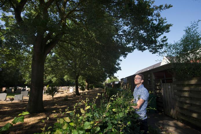 Geert -Jan van Aalten kijkt uit op het kerkhof met de gevreesde eikenprocessierups in de bomen.