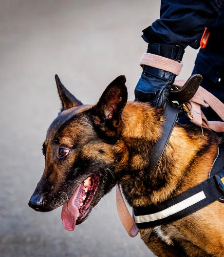 Ambachter gebeten door politiehond na burenruzie