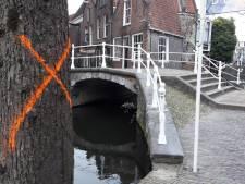 Delftse mysteries: Wat doen die oranje kruizen op bomen?