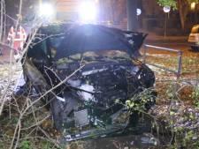 Automobilist negeert stopteken en knalt na achtervolging tegen boom