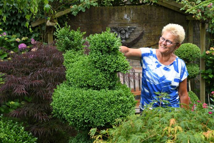 """,,Mijn man was de buxusliefhebber. Gelukkig deden we sinds ons pensioen het knippen samen."""" Er staan zo'n 130 struiken in de tuin."""