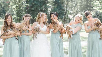 Vergeet boeketten: deze bruid ging met puppy's naar het altaar