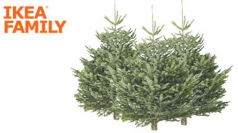Promotie kerstbomen Ikea // Kerstboom