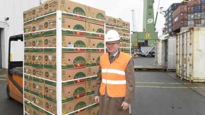 Greenyard neemt Dole Food Company niet over