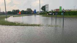 """Fluvius meet schade op na stortbuien in Bree: """"Dit extreme weer zal normaal worden"""""""