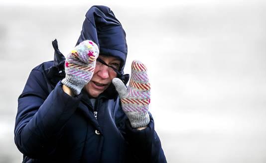 Een vrouw trotseert de wind op een dijk in Lauwersoog.