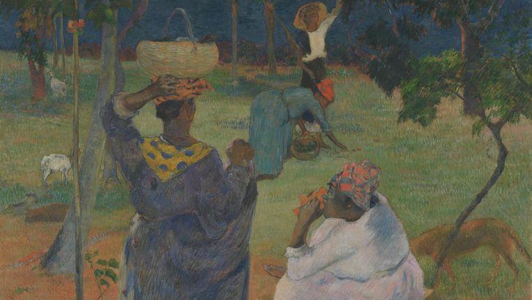 De mangobomen, Martinique (1887), olieverf op doek van Paul Gauguin Beeld Van Gogh Museum