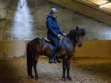 Bentelose verknocht aan IJslandse paarden