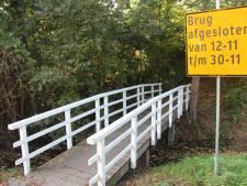 Duiker in plaats van bruggetje in  Eibergse wijk Berkellanden