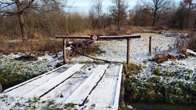 FOTOREPO. Flinterdun sneeuwtapijt in Wijgmaalbroek