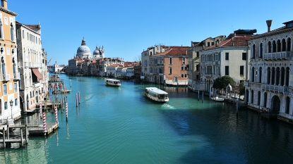 Natuur herovert Venetië: helderblauw water, vissen en broedende eenden in het midden van de stad