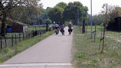 Fietsostrade tussen Herentals en Herselt wordt breder en met meer voorrang voor fietsers