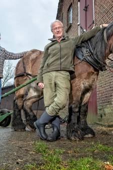 Soms doet een paard het beter dan een machine