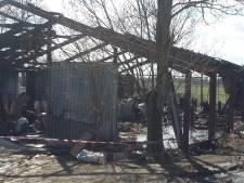 Man (67) opgepakt voor xtc-lab in Poortvliet dat afbrandde en waarbij 28 schapen overleden
