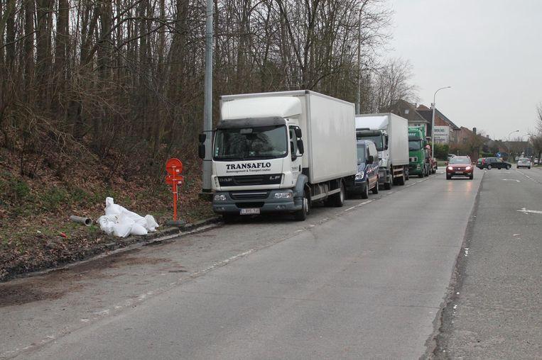 Ook langs de Dansaertlaan zijn vrachtwagens niet langer welkom. Ze voeren enerzijds de parkeerdruk op, en vormen een 'muur' voor wie ongestoord wil sluikstorten - hier overigens te zien aan de witte zakken in de berm.