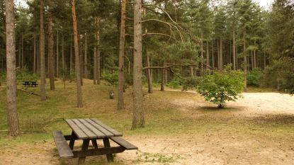 Picknickdag en zandfeest op Hoge Mouw gaan niet door: zandvlakte wordt te heet