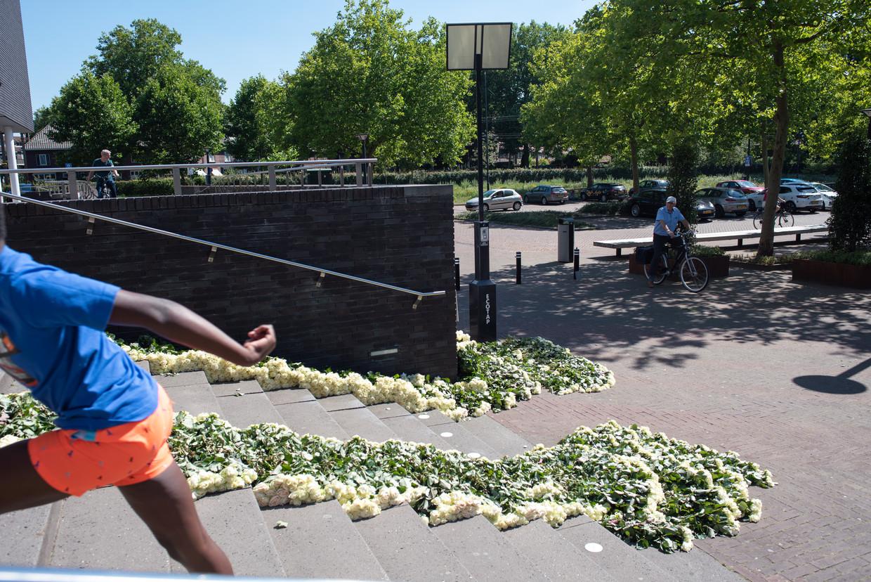 Vierduizend rozen lagen donderdag bij het gemeentehuis van Oss. Daarnaast een bord met de tekst: 'Voor dappere Den Dekker en zijn offers aan de strijd tegen criminaliteit'. De afzender wil anoniem blijven. Beeld Sabine van Wechem