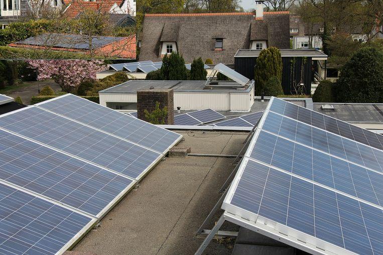 Vier buren, allemaal met zonnepanelen op hun dak. Het dak achter het rieten dak ligt inmiddels ook vol, en de buurman met het rieten dak overweegt op zijn garage ook flink wat panelen te gaan leggen. Al die stroom moet nu nog door veel te dunne draadjes. Beeld Vincent Dekker