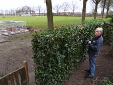 Terreinknecht Ad Sebregts vertroetelt 'zijn' voetbalvelden, desnoods op krukken