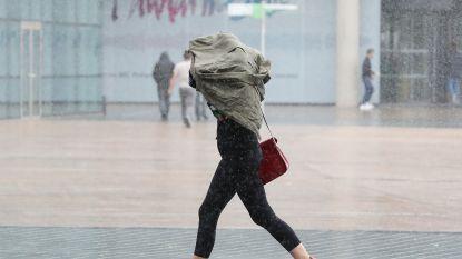 Felle rukwinden en véél regen op komst: 1722 geactiveerd, festival in Gent afgelast, steden sluiten bossen en parken