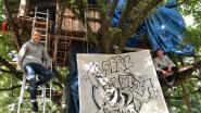 Traditie houdt na 14 jaar nog stand: Timber (16) en Remco (16) kruipen een week 'den boom in'