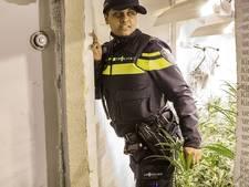 Wietkwekerij in Bergen op Zoom: twee aanhoudingen