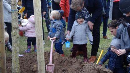 Jaarlijkse geboorteboomplanting in Leopoldstraat