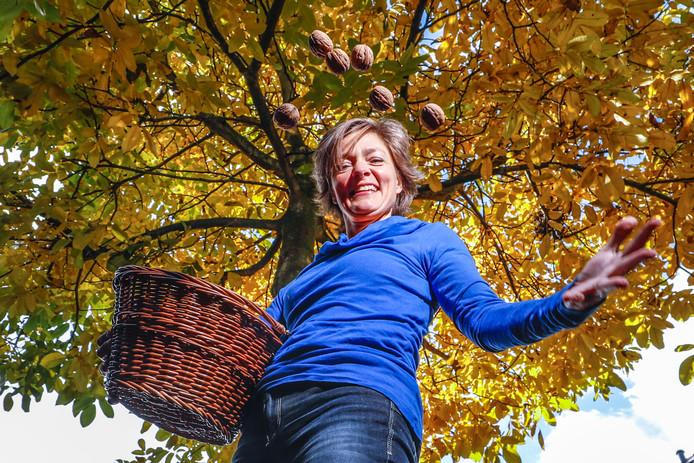 De walnotenboom in haar eigen tuin inspireerde Gerdien Rots (ChristenUnie) om ook in de openbare ruimte meer voedselbomen te planten. Nu een paar duizend zieke essen worden gekapt, ziet zij hier een uitstekende mogelijkheid in.