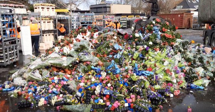 Bloemen eindigen bij het afval