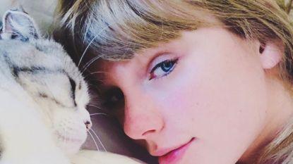 Taylor Swift legt merknaam van katten vast