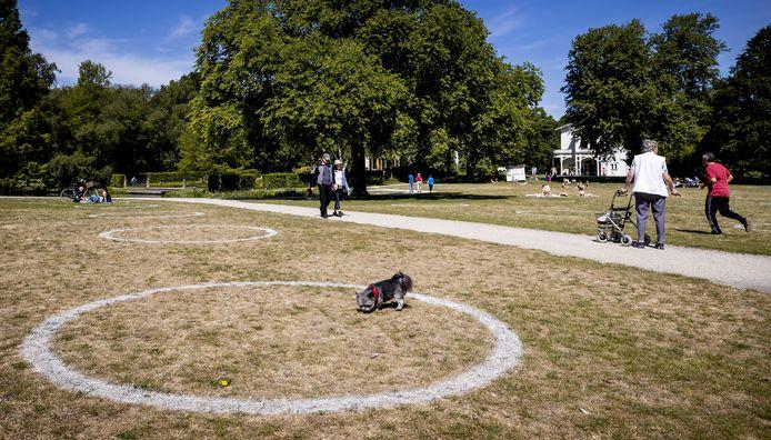 In Het Park in Rotterdam zijn door de gemeente cirkels op het gras aangebracht. Bezoekers worden gevraagd plaats te nemen in de cirkels. De gemeente hoopt op deze manier de 1,5 meter afstand te kunnen waarborgen.