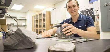 Bomen uit 260 miljoen jaar oud bos op Zuidpool verbazen wetenschappers