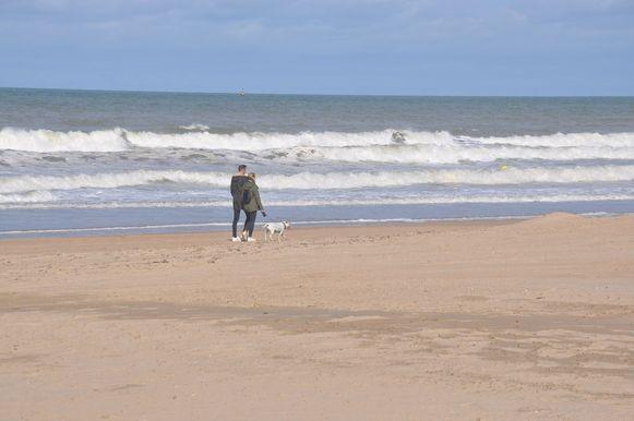 Vanaf 1 oktober mogen honden in Oostende weer een ganse dag op het strand, alhoewel er vandaag al heel wat honden op wandel waren.