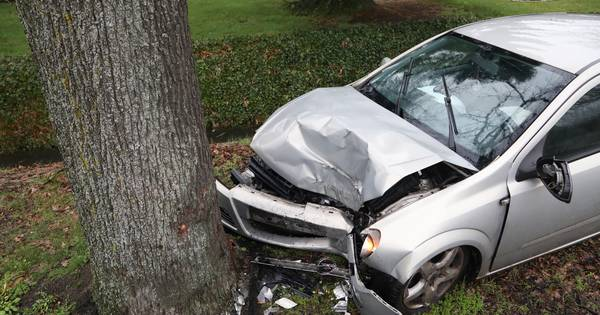 Man raakt gewond bij botsing tegen boom in Heesch.