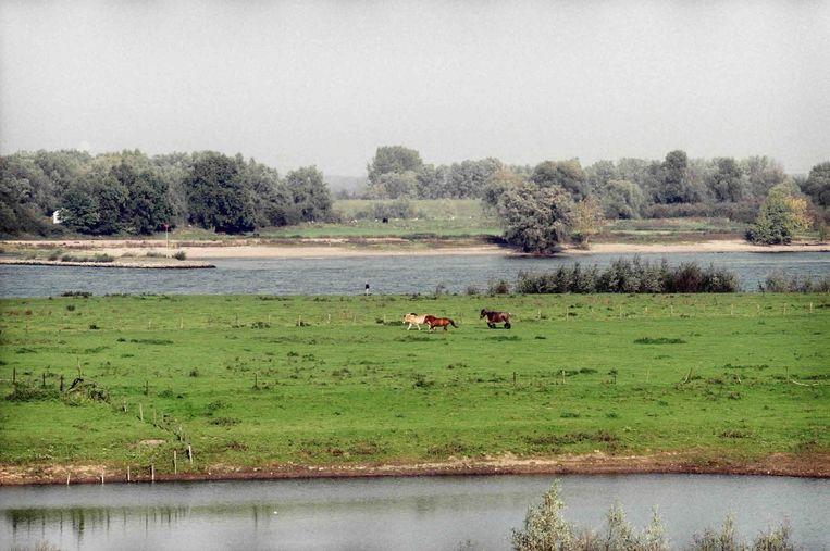 De Ooijpolder bij Nijmegen. Beeld null