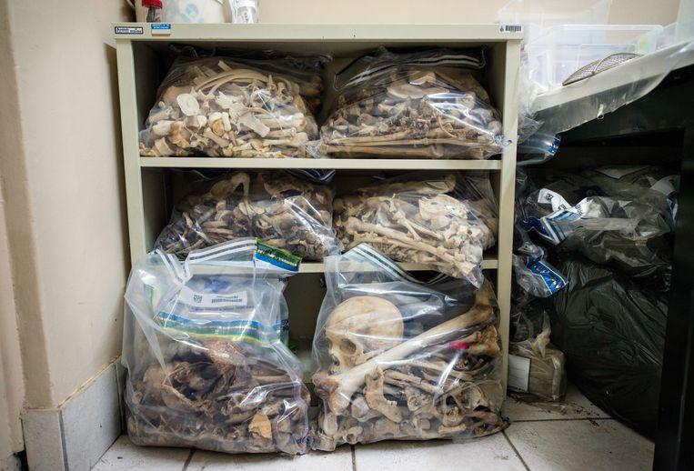 Menselijke botten liggen opgeslagen in het kantoor van antropologe Trisha-Jean Mohan. Beeld Bram Lammers